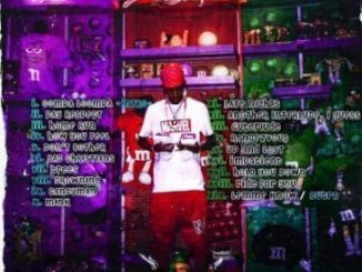 Sbucardo Da DJ & DJ Quality – Run Ft. DJ Target no Ndile[Audio]