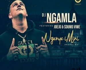 DJ Ngamla – Ngenye Imini Ft. Sdumo Viwe & Joejo [Audio]