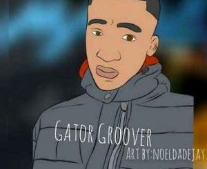 Gator Groover – VW (Dance Mix) (Audio)