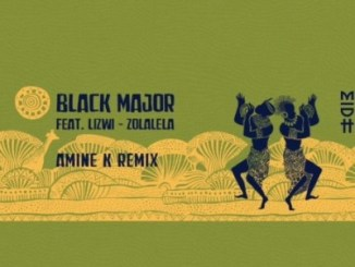 Black Major – Zolalela (Amine K Remix) Ft. Lizwi [Audio]