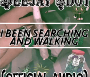 Deejay Vdot – I'vebeen Searching & walking Ft. Kabza De small & Mdu A.k.a. Trp