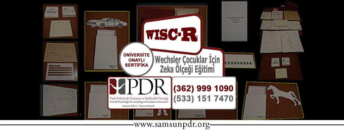 #Eğitim: WISCr