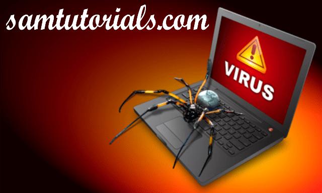 paind viru