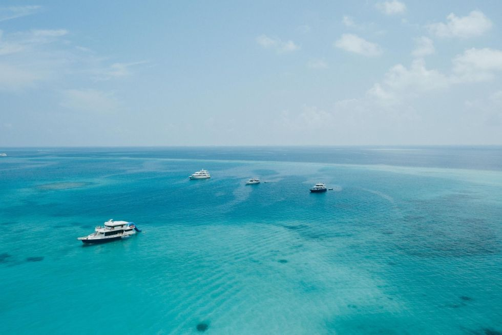 Ari Atoll Liveaboards in the Maldives