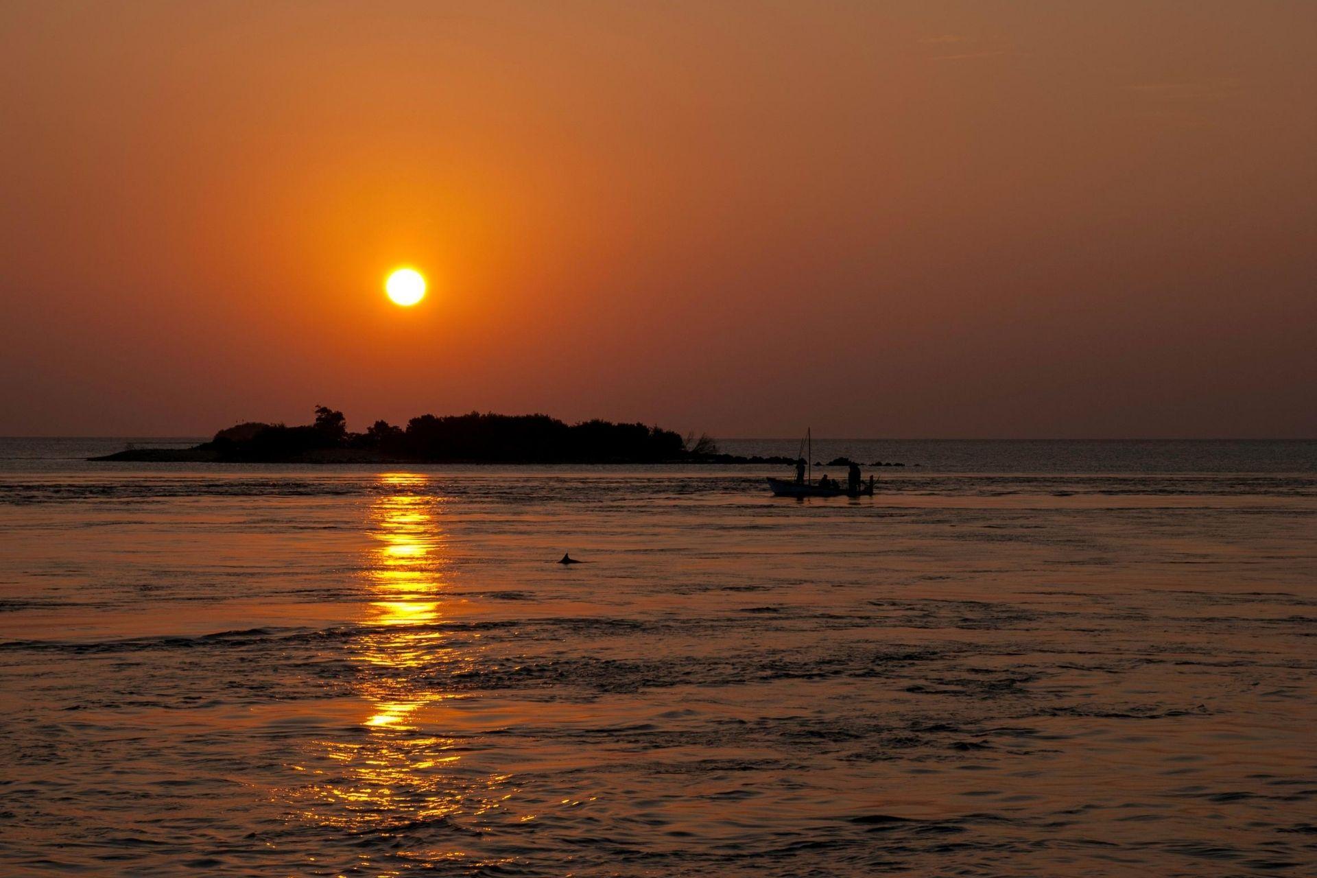Maldives Sunset Dolphin Boat Trip