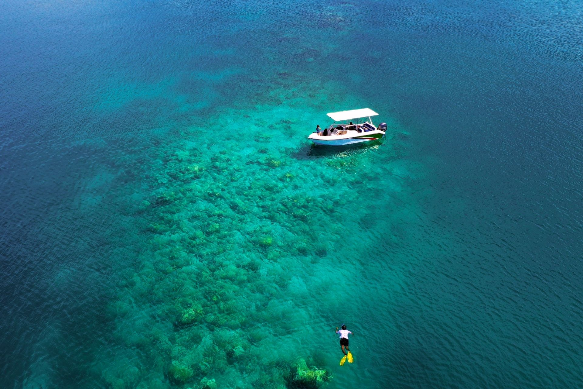 Snorkeling in Maldives (Cost, Best Time, Atoll, Packages, Season, Conditions & Resorts)