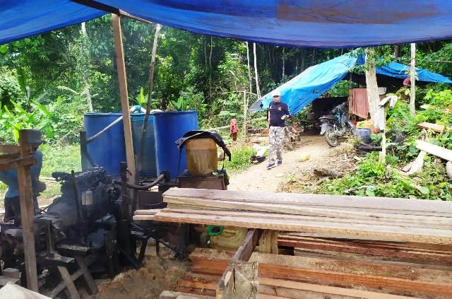 Polisi Aceh Amankan Lima Pelaku Illegal Logging