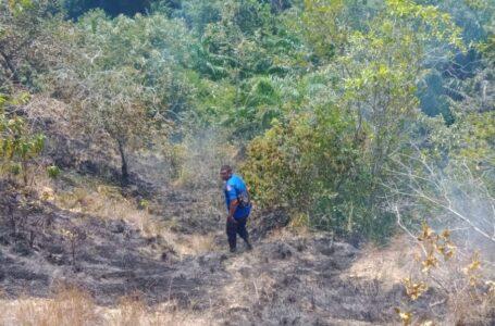 Hanya Di Bulan Februari Saja, 107 Hektar Lahan Di Aceh Terbakar