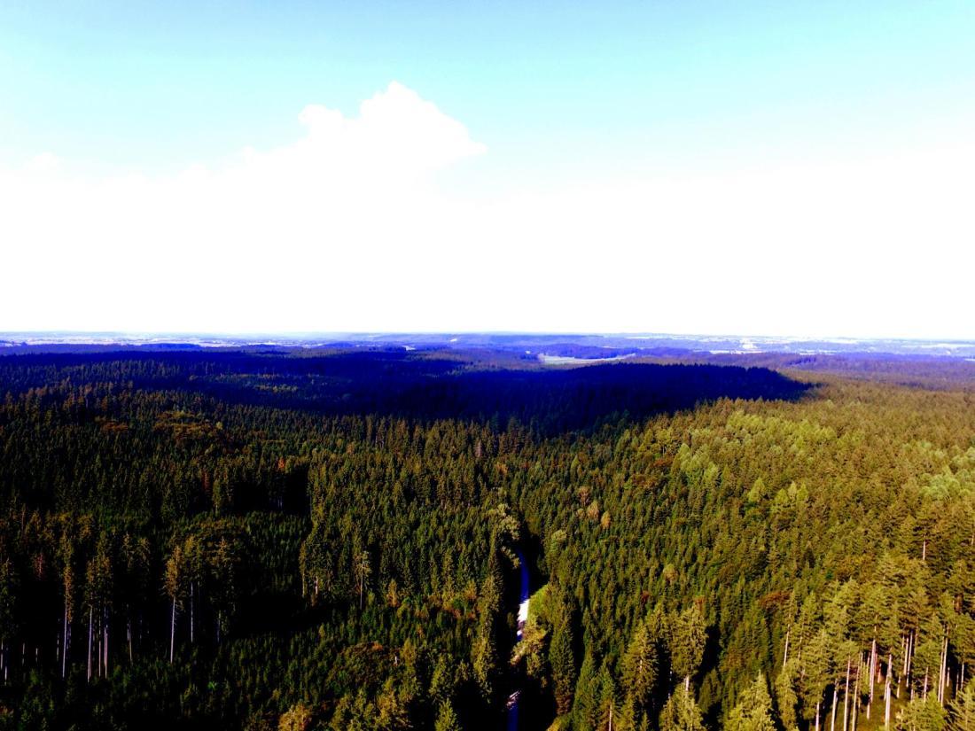 Heimische Wälder