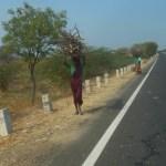 Auf und Abs in Indien