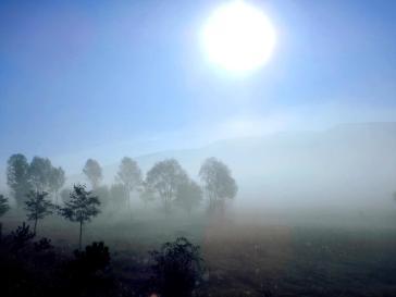 Nebelschwaden am Morgen