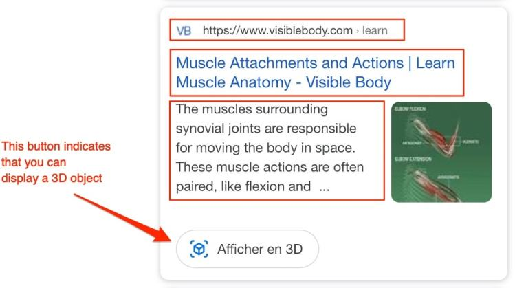 3D objects are only available in the mobile search page of Google.