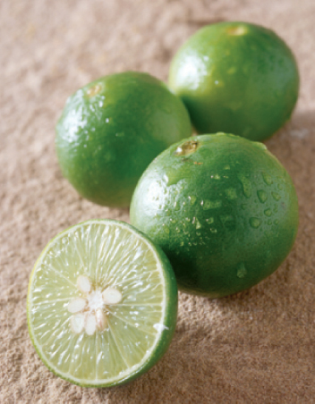 Lime Spa ingredients