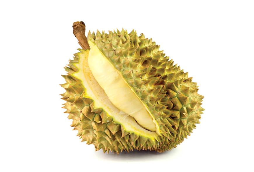 Top 15 fruits thailand - durian