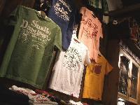 STUDIO D`ARTSAN 半袖プリントTシャツ入荷しました。