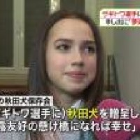 """Zagitowa """"The name of the Akita dog will be in Masaru. Is a girl. Victory will'm Japanese that means?"""""""