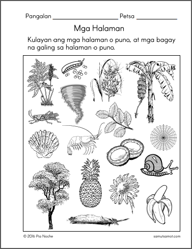 halaman_p3