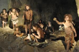 Förmodligen kunde den moderna människan överleva naturen i ett kallare klimat tack vare uppblandningen med Neandertalarna