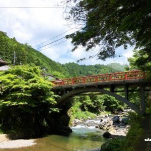【愛宕山】嵐山から六丁峠を越えて、新緑の納涼トレッキング♪