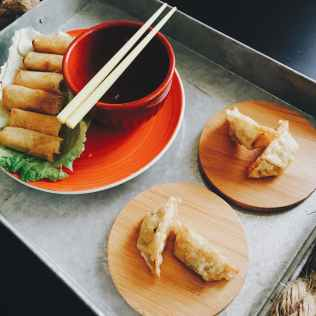 fried spring rolls and dumplings on top of tray