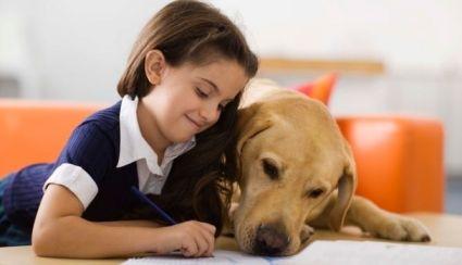 niños, mascota, perro