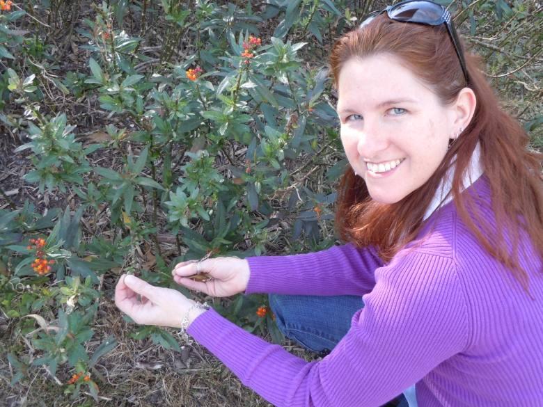 UTSA Graduate Student Terri Matiella is researching chemical properties of milkweed