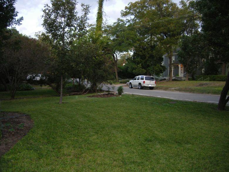 St. Augustine grass begs for a flower garden in Alamo Heights