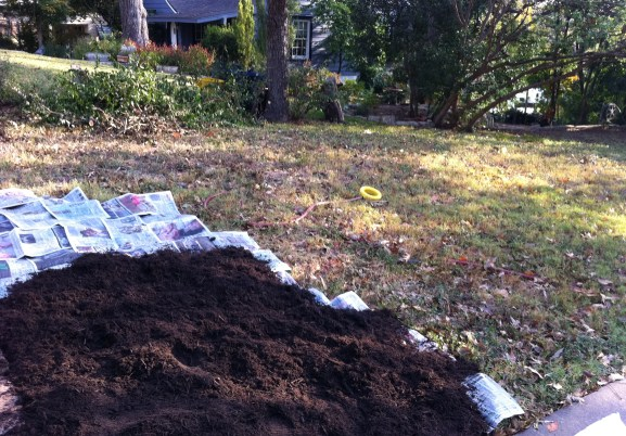 Solarization: Don't scrimp on the mulch and newspapers