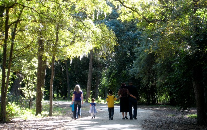 A family walks along one of the shaded roadways in Brackenridge Park.