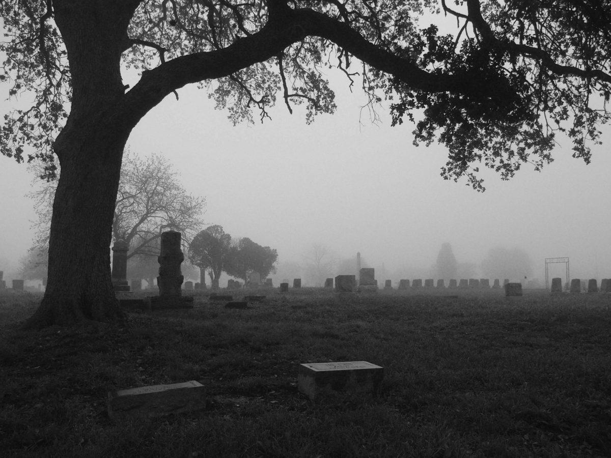 Foggy Morning. Photo by Juan Garcia.