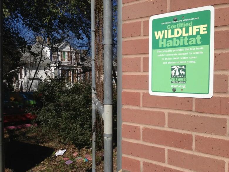 Wildlife at Bonham.