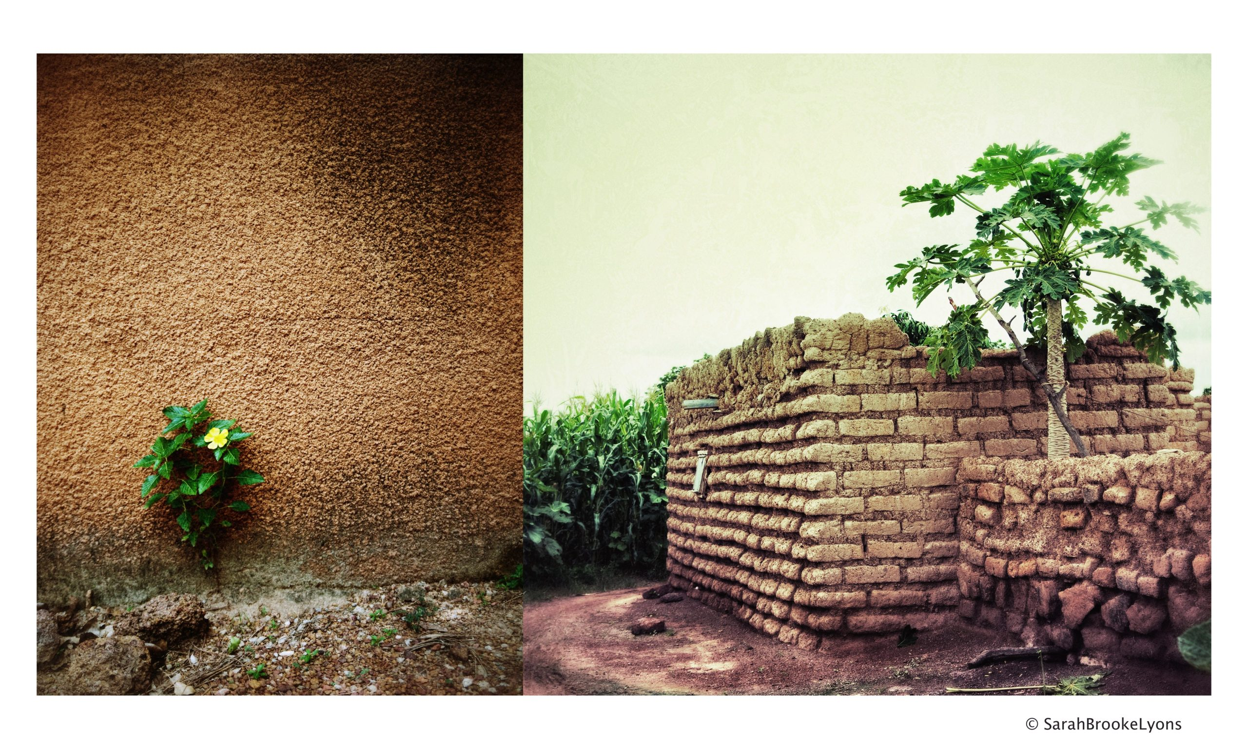 Homes in Burkina Faso. Photo by Sarah Brooke Lyons.