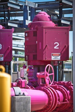 SAWS' purple recycled water pipes. Courtesy photo.