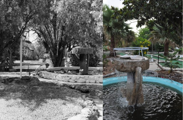 Cool Crest course fountain: before and after more than 50 years. Photo Courtesy of the Metzger Estate / Annette Crawford.