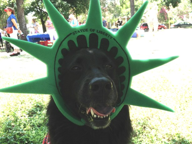 Cocoa Rivard, Canine Correspondent for the Rivard Report