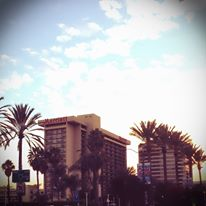 This year's Excellence in Journalism venue: the Anaheim Marriott. Photo by Jordan Gass-Poore'.