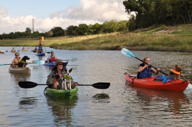 Dozens of kayakers passed by the opening ceremony festivities on the Mission Reach. Pictured: San Antonio Nature Hounds, a local recreational meet-up for dogs and their pet humans, pass by Padre Park during the opening ceremony of the Mission Reach. Photo by Iris Dimmick.