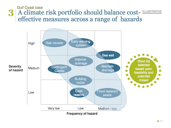 Shaping climate-resilient  business development