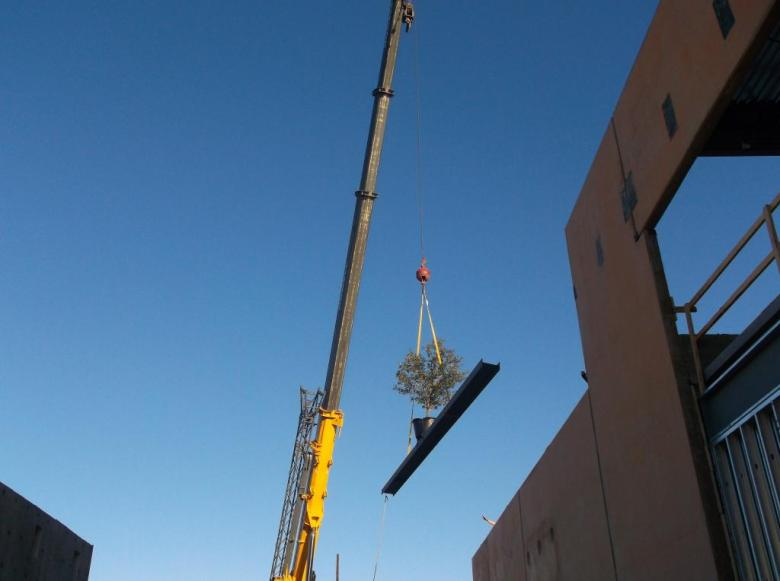 """the last beam to be raised to the rooftop along with the traditional """"topping off"""" tree. Photo by Bruce Graham."""