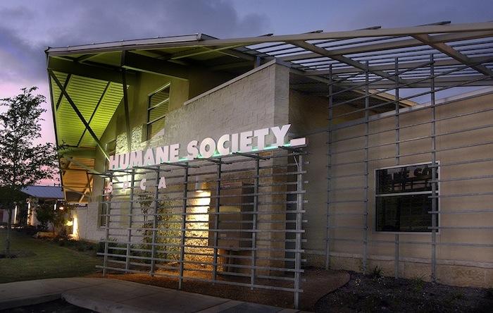 The Humane Society/SPCA of San Antonio. Photo courtesy of Alamo Architecture.