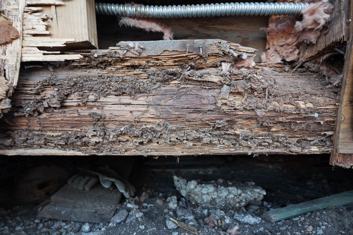Exposed botten beam of Boehlers. Photo by Scott Martin for the Pearl.