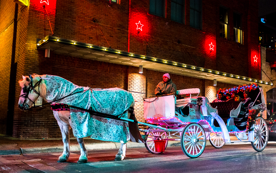 A horse wears a blanket while pulling customers in downtown San Antonio. Photo by Scott Ball.