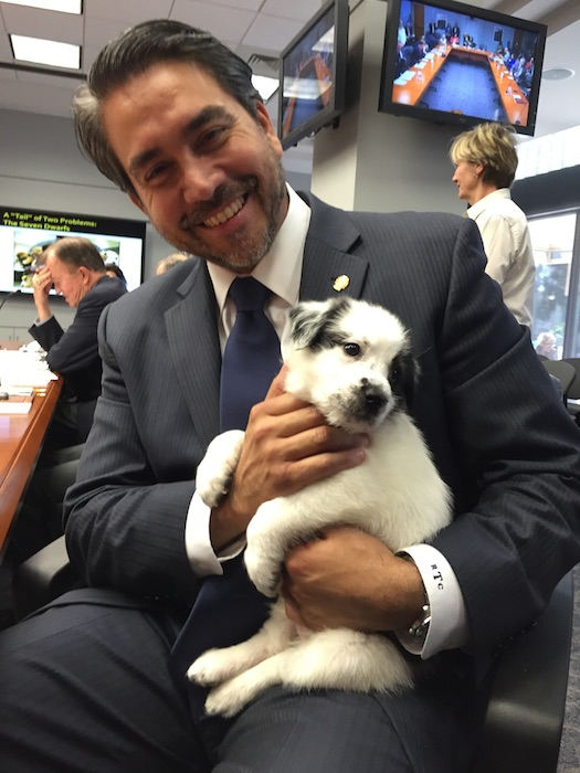 Roberto Treviño poses for photo with a rescued puppy from ACS. Photo by Robert Rivard.