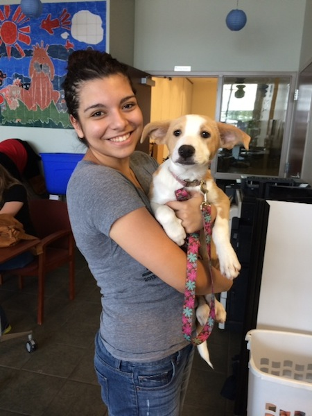 A puppy finds his forever home at SAPA! Courtesy photo.