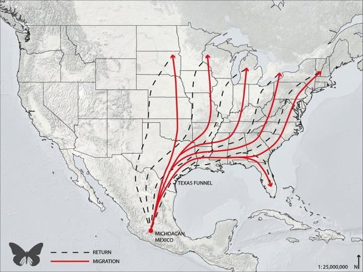 Monarch map