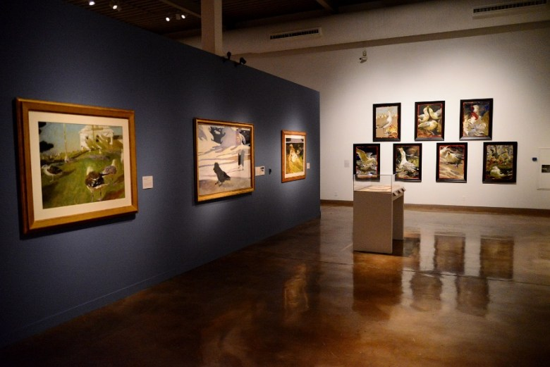 Wyeth paintings featuring birds. Photo by Page Graham.
