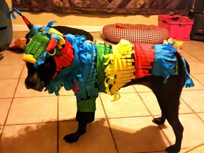The infamous Lolita Piñata. Photo by Ruby Guarnero.