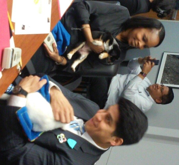 San Antonio Animal Care Services representatives brought some adoptable puppies into Wednesday's City Council B session. Seen here are Mayor Ivy Taylor and District 4 Councilman Rey Saldana. Photo by Edmond Ortiz