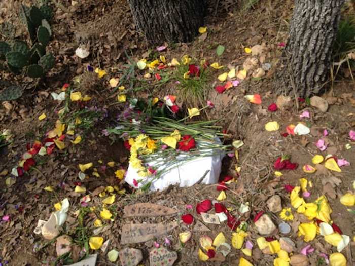 Flower petals surround a burial site in Eloise Woods, a Green Burial Park outside of Austin. Photo courtesy of Ellen Macdonald.