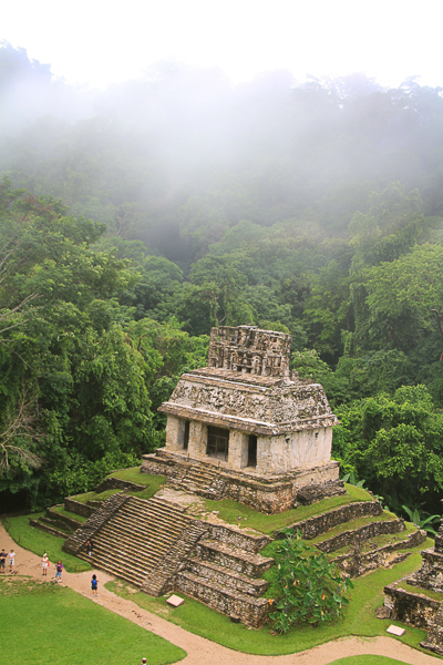 The Temple of the Sun at Palenque as seen from the Temple of the Cross. Courtesy Photo.